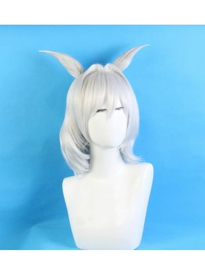 Fate/Grand Order Lancer Caenis Cosplay Wig for Sale