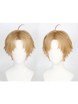 Mushoku Tensei Rudeus Greyrat Cosplay Wig