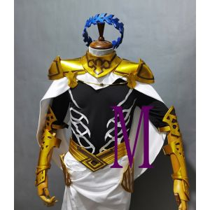 Fate/Grand Order Saber Dioscuri Castor Cosplay Costume Armor