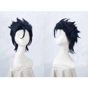 Fate/Zero Lancer Cosplay Wig Buy