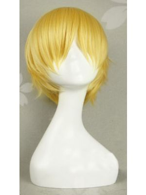 Fate/stay night Gilgamesh Cosplay Wig for Sale