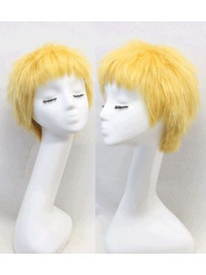 One Piece Donquixote Doflamingo Cosplay Wig for Sale